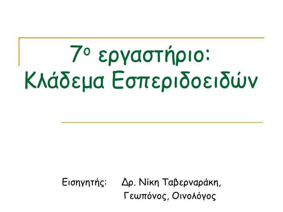 7 ο εργαστήριο: Κλάδεμα Εσπεριδοειδών Εισηγητής: Δρ. Νίκη Ταβερναράκη, Γεωπόνος, Οινολόγος