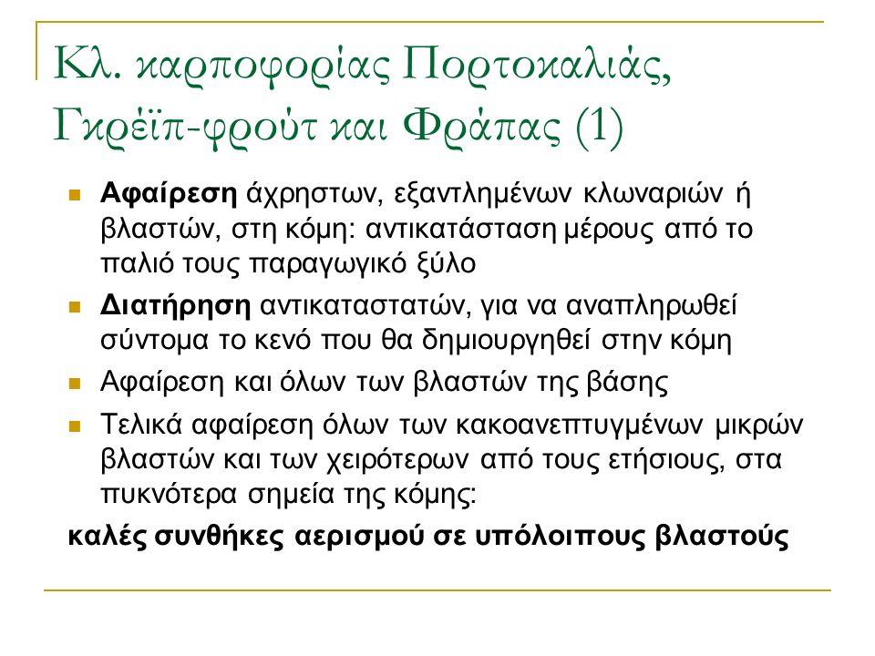 Κλ. καρποφορίας Πορτοκαλιάς, Γκρέϊπ-φρούτ και Φράπας (1) Αφαίρεση άχρηστων, εξαντλημένων κλωναριών ή βλαστών, στη κόμη: αντικατάσταση μέρους από το πα