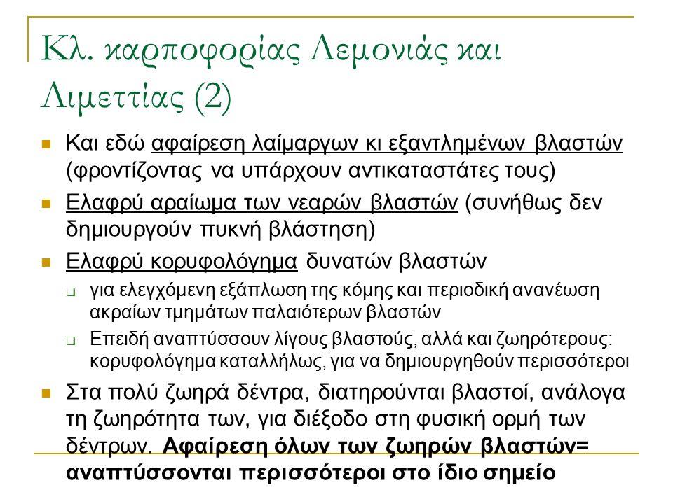 Κλ. καρποφορίας Λεμονιάς και Λιμεττίας (2) Και εδώ αφαίρεση λαίμαργων κι εξαντλημένων βλαστών (φροντίζοντας να υπάρχουν αντικαταστάτες τους) Ελαφρύ αρ