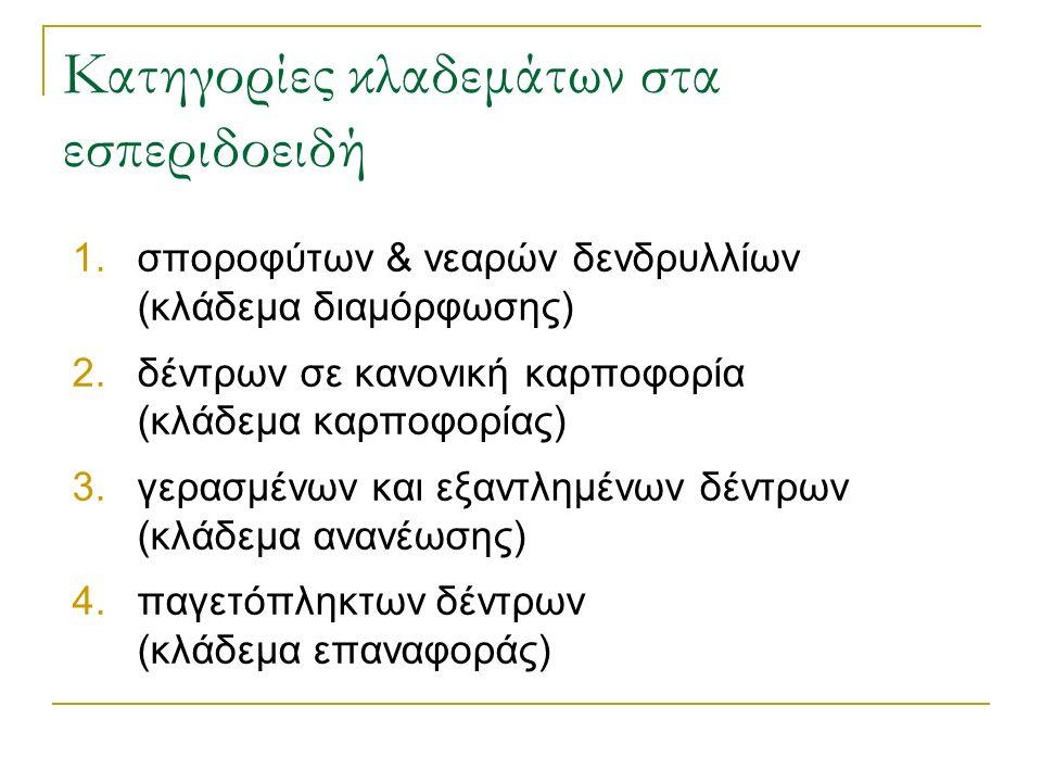 Κατηγορίες κλαδεμάτων στα εσπεριδοειδή 1.σποροφύτων & νεαρών δενδρυλλίων (κλάδεμα διαμόρφωσης) 2.δέντρων σε κανονική καρποφορία (κλάδεμα καρποφορίας) 3.γερασμένων και εξαντλημένων δέντρων (κλάδεμα ανανέωσης) 4.παγετόπληκτων δέντρων (κλάδεμα επαναφοράς)