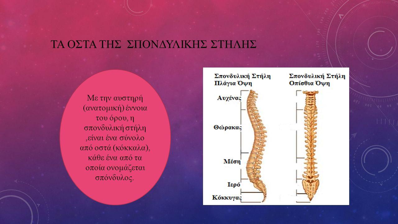 ΤΑ ΟΣΤΑ ΤΗΣ ΣΠΟΝΔΥΛΙΚΗΣ ΣΤΗΛΗΣ Με την αυστηρή (ανατομική) έννοια του όρου, η σπονδυλική στήλη,είναι ένα σύνολο από οστά (κόκκαλα), κάθε ένα από τα οπο
