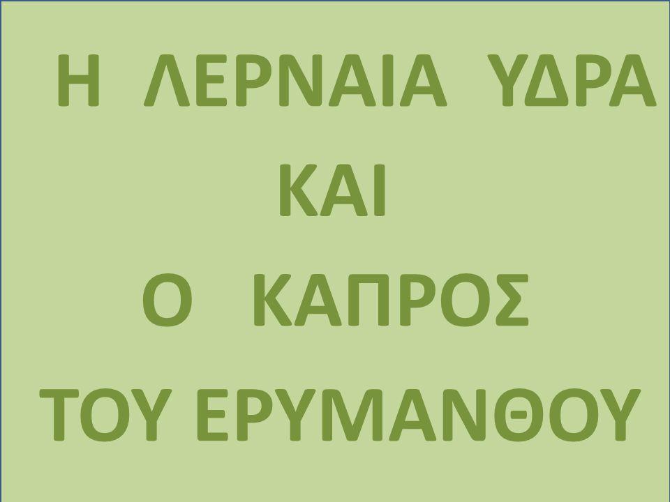ΗΛΕΡΝΑΙΑ ΥΔΡΑ ΚΑΙ ΟΚΑΠΡΟΣ ΤΟΥ ΕΡΥΜΑΝΘΟΥ