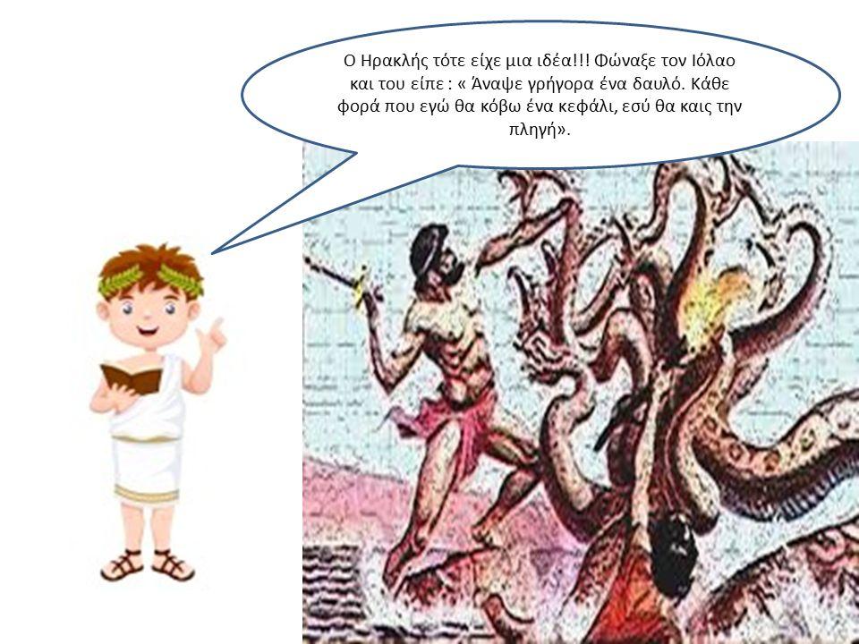 Ο Ηρακλής τότε είχε μια ιδέα!!. Φώναξε τον Ιόλαο και του είπε : « Άναψε γρήγορα ένα δαυλό.
