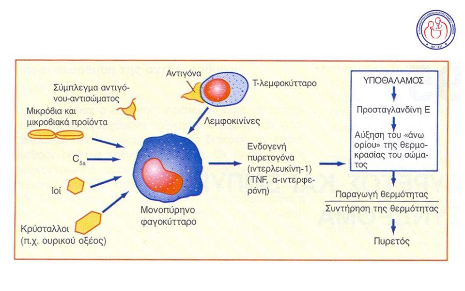  Λοιμώξεις στοματικής κοιλότητας  Οστεομυελίτιδες (σπονδύλων, ενδοπροθέσεων)  Ενδαγγειακές λοιμώξεις (ανευρυσμάτων, αγγειακών μοσχευμάτων)  Ενδοκαρδίτιδα  Ενδοκοιλιακά αποστήματα  Λοιμώξεις ουροποιητικού
