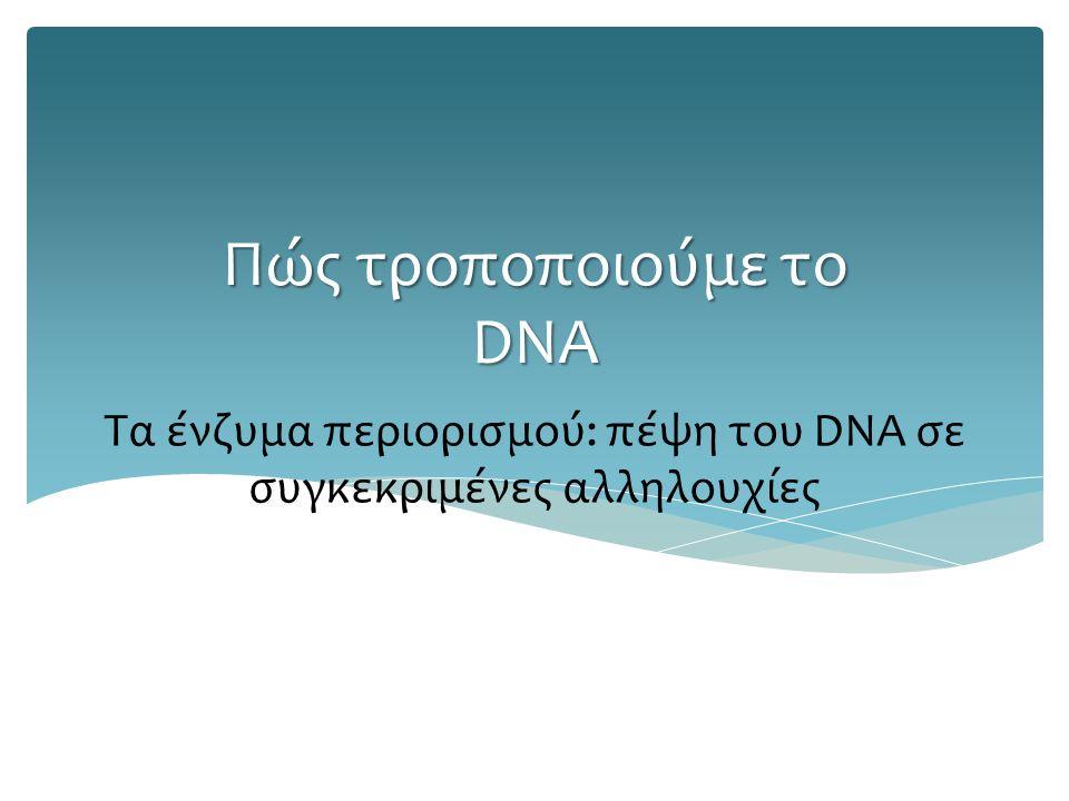 Τα ένζυμα περιορισμού: πέψη του DNA σε συγκεκριμένες αλληλουχίες Πώς τροποποιούμε το DNA