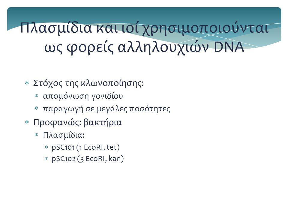 Πλασμίδια και ιοί χρησιμοποιούνται ως φορείς αλληλουχιών DNA  Στόχος της κλωνοποίησης:  απομόνωση γονιδίου  παραγωγή σε μεγάλες ποσότητες  Προφανώς: βακτήρια  Πλασμίδια:  pSC101 (1 EcoRI, tet)  pSC102 (3 EcoRI, kan)