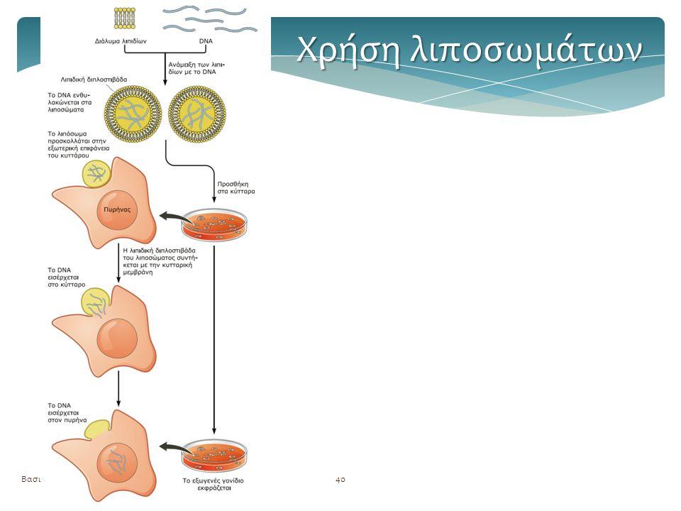 Βασική τεχνολογία GMOs40 Χρήση λιποσωμάτων