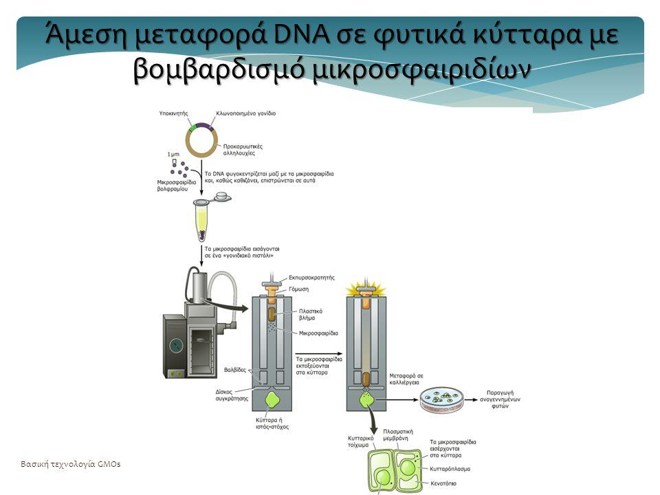 Βασική τεχνολογία GMOs41 Άμεση μεταφορά DNA σε φυτικά κύτταρα με βομβαρδισμό μικροσφαιριδίων
