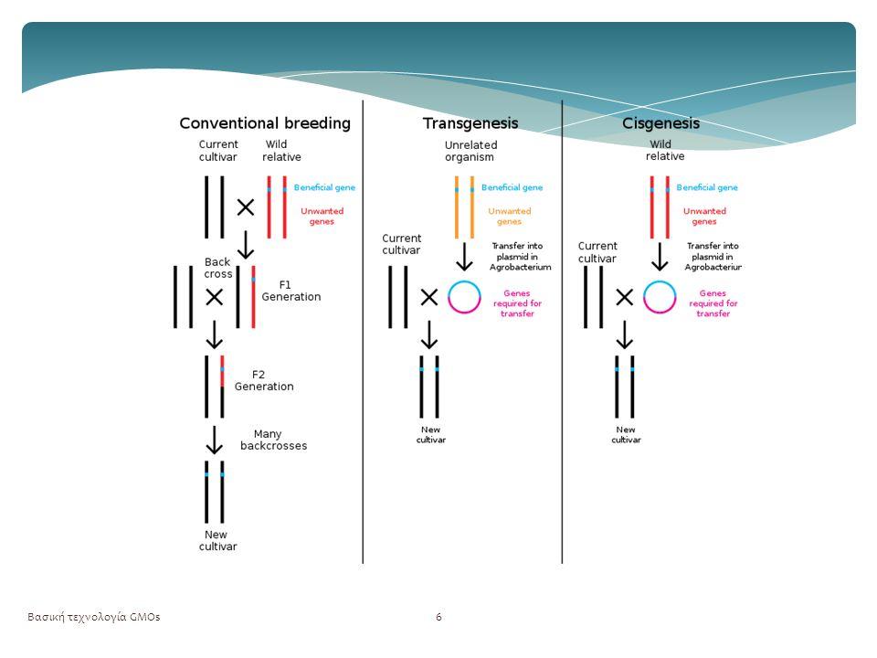 Βασική τεχνολογία GMOs37 Γενικευμένη μεταγωγή