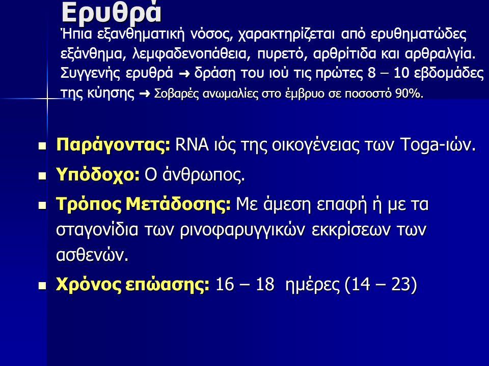 Ερυθρά Παράγοντας: RNA ιός της οικογένειας των Toga-ιών.