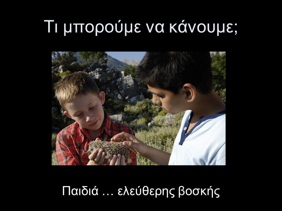 Παιδιά … ελεύθερης βοσκής