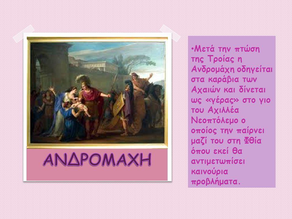 Μετά την πτώση της Τροίας η Ανδρομάχη οδηγείται στα καράβια των Αχαιών και δίνεται ως «γέρας» στο γιο του Αχιλλέα Νεοπτόλεμο ο οποίος την παίρνει μαζί του στη Φθία όπου εκεί θα αντιμετωπίσει καινούρια προβλήματα.