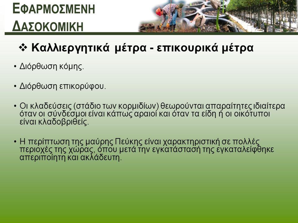  Καλλιεργητικά μέτρα - επικουρικά μέτρα Διόρθωση κόμης.