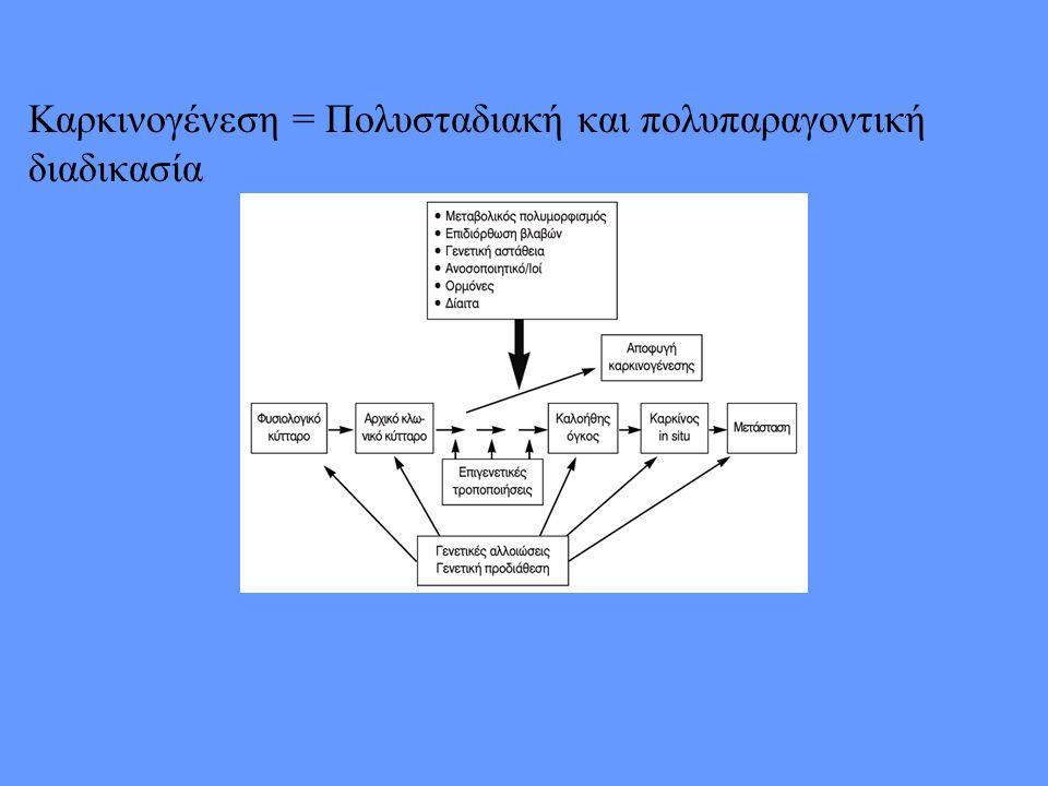 Καρκινογένεση = Πολυσταδιακή και πολυπαραγοντική διαδικασία