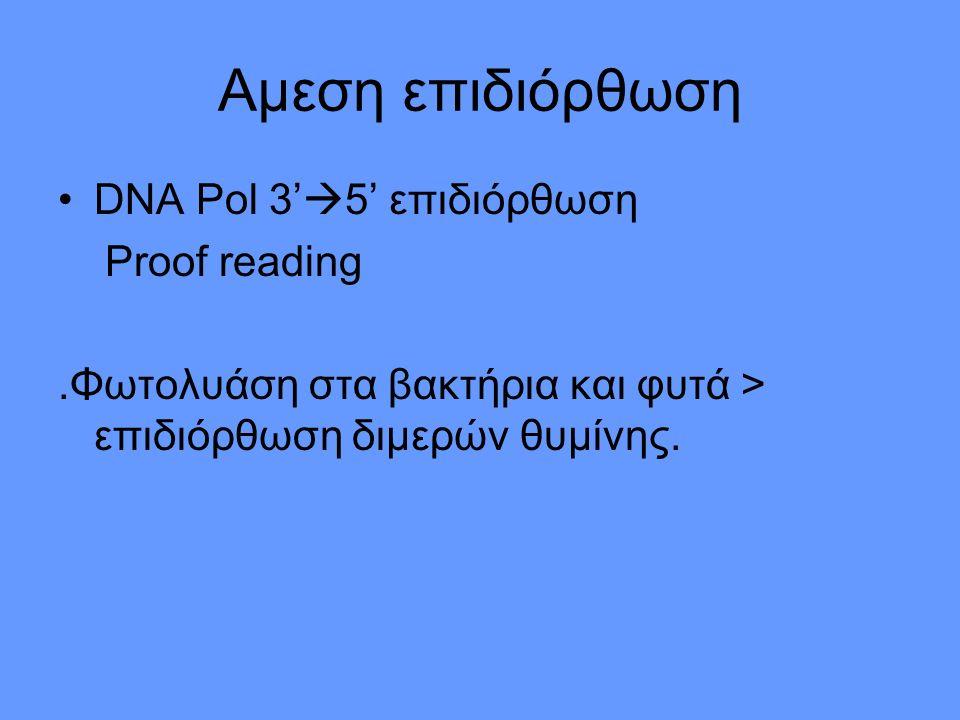 Αμεση επιδιόρθωση DNA Pol 3'  5' επιδιόρθωση Proof reading.Φωτολυάση στα βακτήρια και φυτά > επιδιόρθωση διμερών θυμίνης.