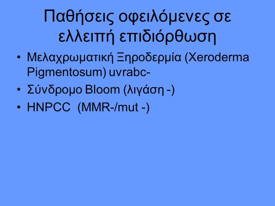Παθήσεις οφειλόμενες σε ελλειπή επιδιόρθωση Μελαχρωματική Ξηροδερμία (Xeroderma Pigmentosum) uvrabc- Σύνδρομο Βloom (λιγάση -) ΗΝPCC (MMR-/mut -)