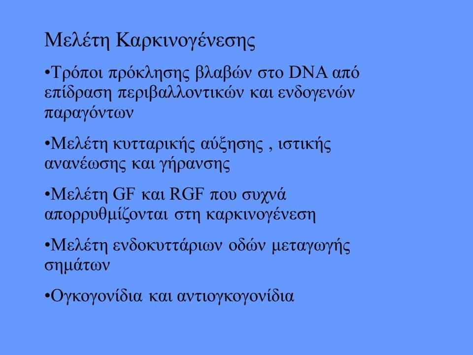 Μελέτη Καρκινογένεσης Τρόποι πρόκλησης βλαβών στο DNA από επίδραση περιβαλλοντικών και ενδογενών παραγόντων Μελέτη κυτταρικής αύξησης, ιστικής ανανέωσης και γήρανσης Μελέτη GF και RGF που συχνά απορρυθμίζονται στη καρκινογένεση Μελέτη ενδοκυττάριων οδών μεταγωγής σημάτων Ογκογονίδια και αντιογκογονίδια