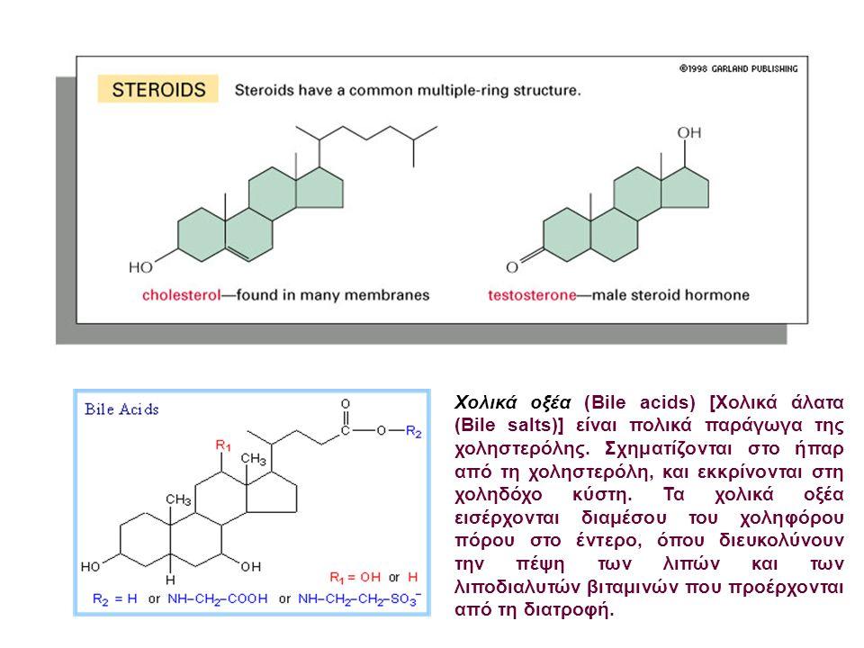 Χολικά οξέα (Bile acids) [Χολικά άλατα (Bile salts)] είναι πολικά παράγωγα της χοληστερόλης.