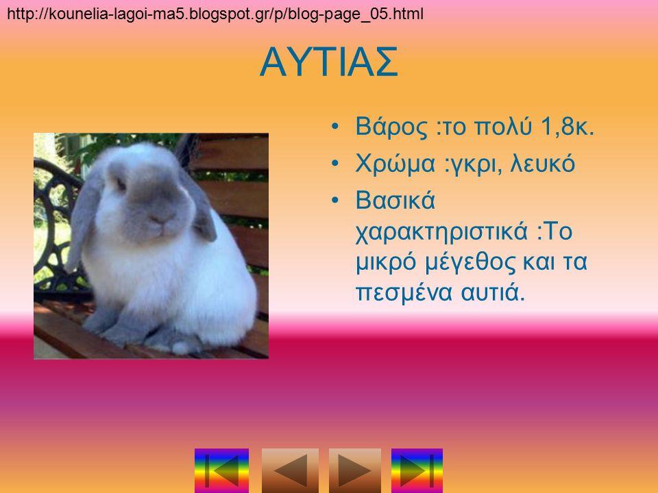 Ιωάννα Ρίζου Αδριάνα Νικολαΐδου Πληροφορική Σχολικό έτος 2014-2015 http://kounelia-lagoi-ma5.blogspot.gr/p/blog-page_05.html