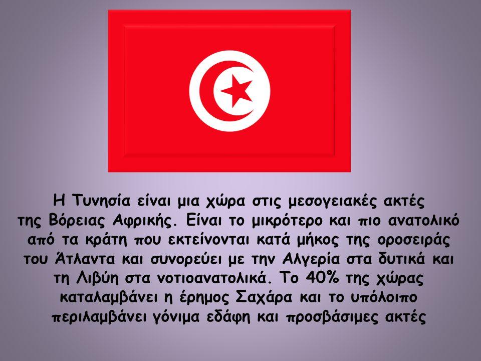 Η Τυνησία είναι μια χώρα στις μεσογειακές ακτές της Βόρειας Αφρικής.