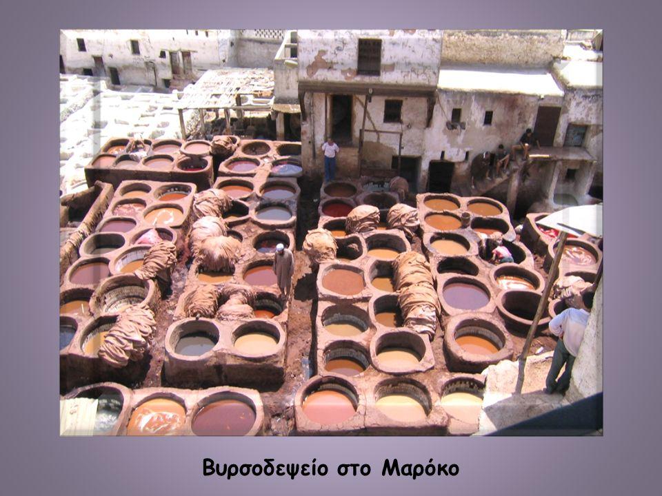 Βυρσοδεψείο στο Μαρόκο