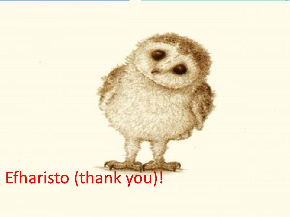 Efharisto (thank you)!