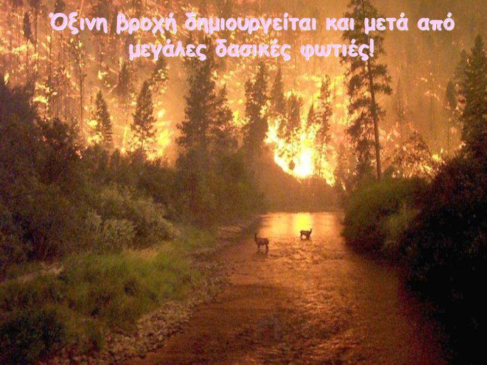 Όξινη βροχή δημιουργείται και μετά από μεγάλες δασικές φωτιές!