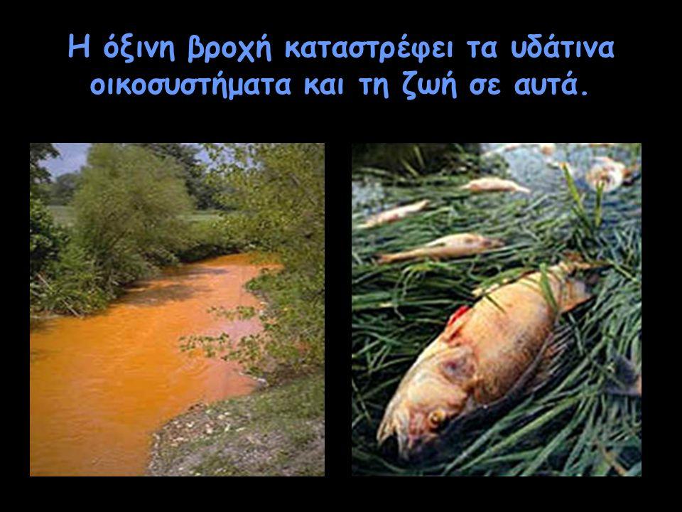 Η όξινη βροχή καταστρέφει τα υδάτινα οικοσυστήματα και τη ζωή σε αυτά.