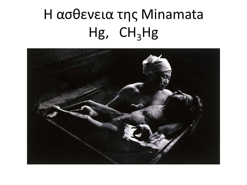 H ασθενεια της Minamata Hg, CH 3 Hg