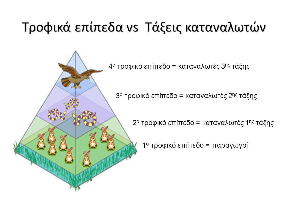 Τροφικά επίπεδα vs Τάξεις καταναλωτών 1 ο τροφικό επίπεδο = παραγωγοί 2 ο τροφικό επίπεδο = καταναλωτές 1 ης τάξης 4 ο τροφικό επίπεδο = καταναλωτές 3 ης τάξης 3 ο τροφικό επίπεδο = καταναλωτές 2 ης τάξης