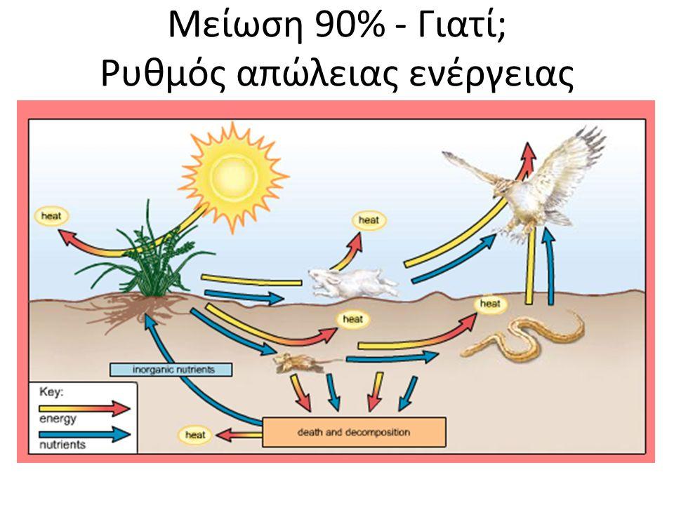 Μείωση 90% - Γιατί; Ρυθμός απώλειας ενέργειας