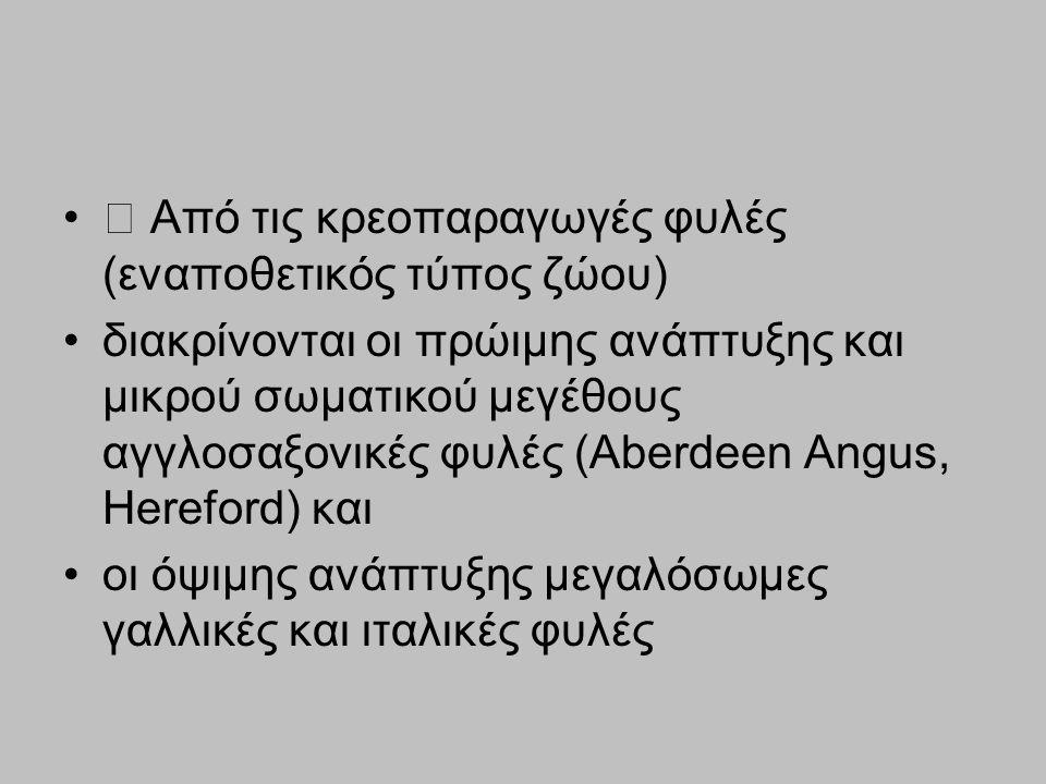 Από τις κρεοπαραγωγές φυλές (εναποθετικός τύπος ζώου) διακρίνονται οι πρώιμης ανάπτυξης και μικρού σωματικού μεγέθους αγγλοσαξονικές φυλές (Αberdeen A