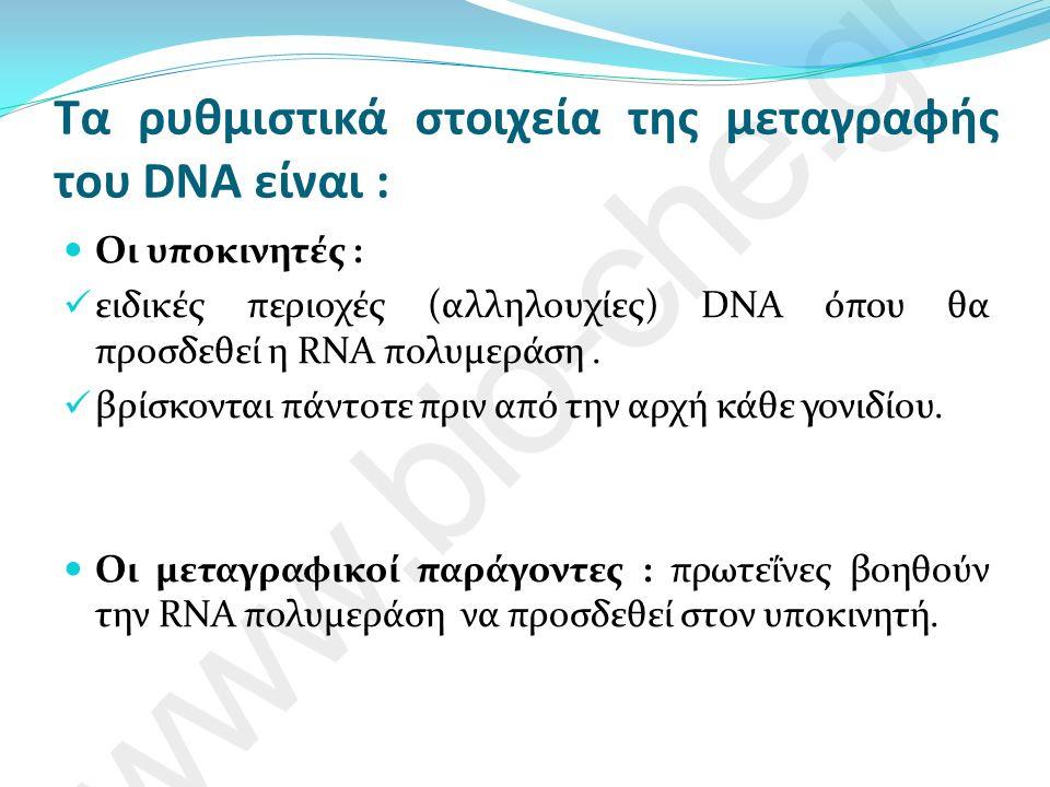 Τα ρυθμιστικά στοιχεία της μεταγραφής του DNA είναι : Οι υποκινητές : ειδικές περιοχές (αλληλουχίες) DNA όπου θα προσδεθεί η RNA πολυμεράση.