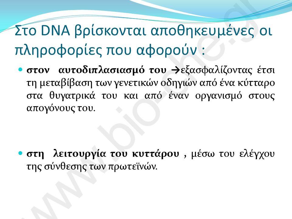 Μεταγραφή του DNA