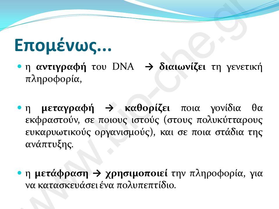 Παρατηρήσεις.... Όλα τα κύτταρα ενός πολυκύτταρου οργανισμού έχουν το ίδιο DNA.