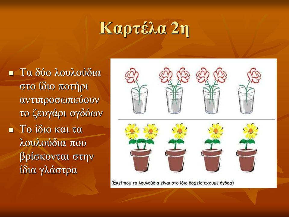 Καρτέλα 2η Τα δύο λουλούδια στο ίδιο ποτήρι αντιπροσωπεύουν το ζευγάρι ογδόων Τα δύο λουλούδια στο ίδιο ποτήρι αντιπροσωπεύουν το ζευγάρι ογδόων Το ίδιο και τα λουλούδια που βρίσκονται στην ίδια γλάστρα Το ίδιο και τα λουλούδια που βρίσκονται στην ίδια γλάστρα