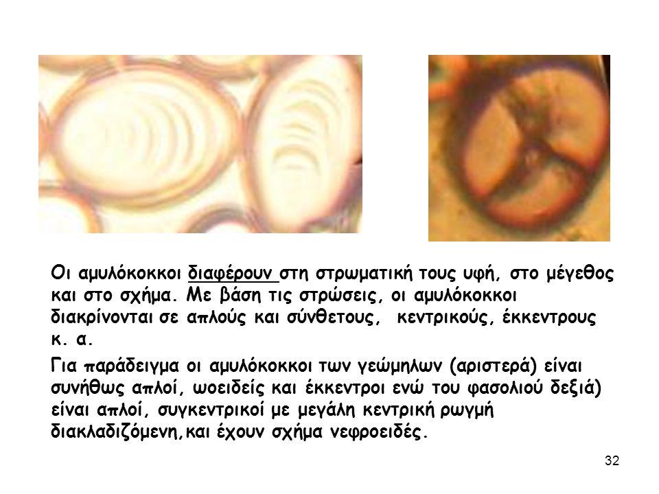 Οι αμυλόκοκκοι διαφέρουν στη στρωματική τους υφή, στο μέγεθος και στο σχήμα.