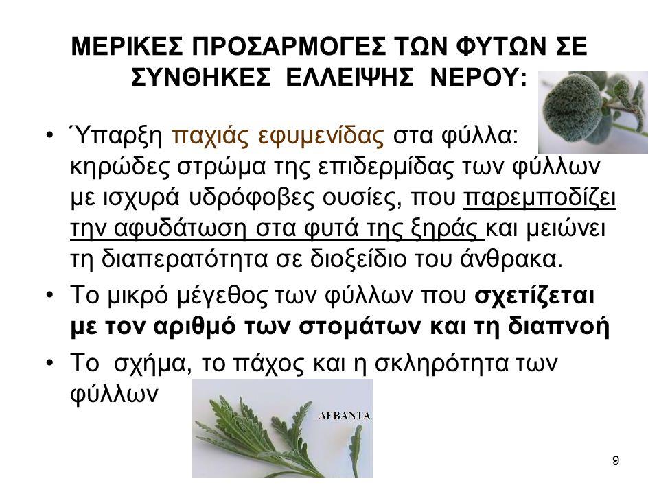 ΜΕΡΙΚΕΣ ΠΡΟΣΑΡΜΟΓΕΣ ΤΩΝ ΦΥΤΩΝ ΣΕ ΣΥΝΘΗΚΕΣ ΕΛΛΕΙΨΗΣ ΝΕΡΟΥ: Ύπαρξη παχιάς εφυμενίδας στα φύλλα: κηρώδες στρώμα της επιδερμίδας των φύλλων με ισχυρά υδρόφοβες ουσίες, που παρεμποδίζει την αφυδάτωση στα φυτά της ξηράς και μειώνει τη διαπερατότητα σε διοξείδιο του άνθρακα.