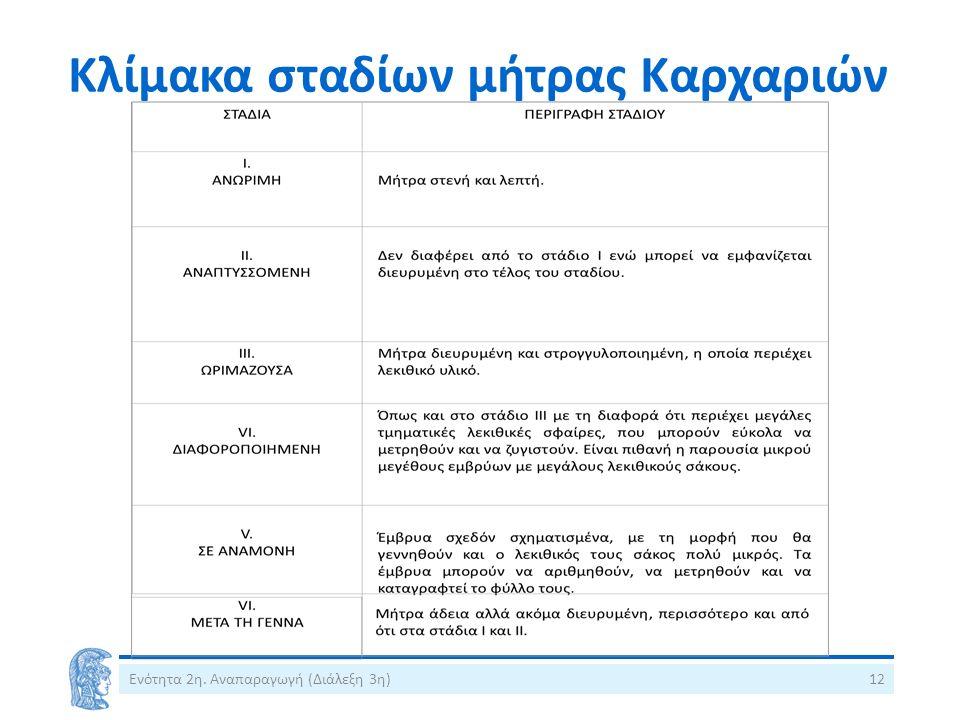 Κλίμακα σταδίων μήτρας Καρχαριών Ενότητα 2η. Αναπαραγωγή (Διάλεξη 3η)12