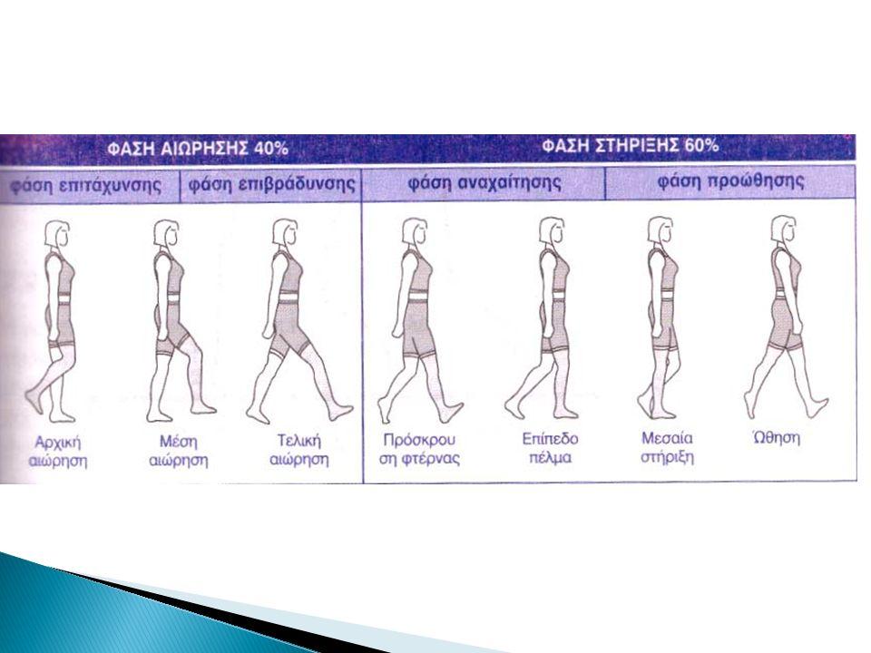 Κατά τη βάδιση, όταν το ένα πόδι βρίσκεται σε επαφή με το έδαφος,το αντίθετο πόδι κινείται.
