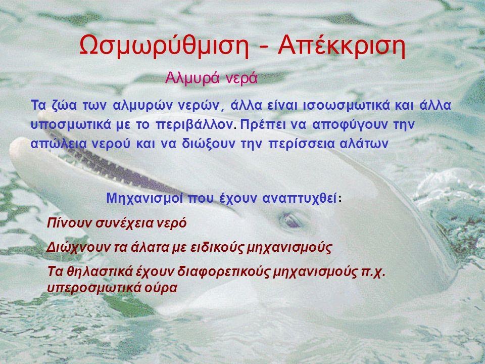 Ωσμωρύθμιση - Απέκκριση Τα ζώα των αλμυρών νερών, άλλα είναι ισοωσμωτικά και άλλα υποσμωτικά με το περιβάλλον.
