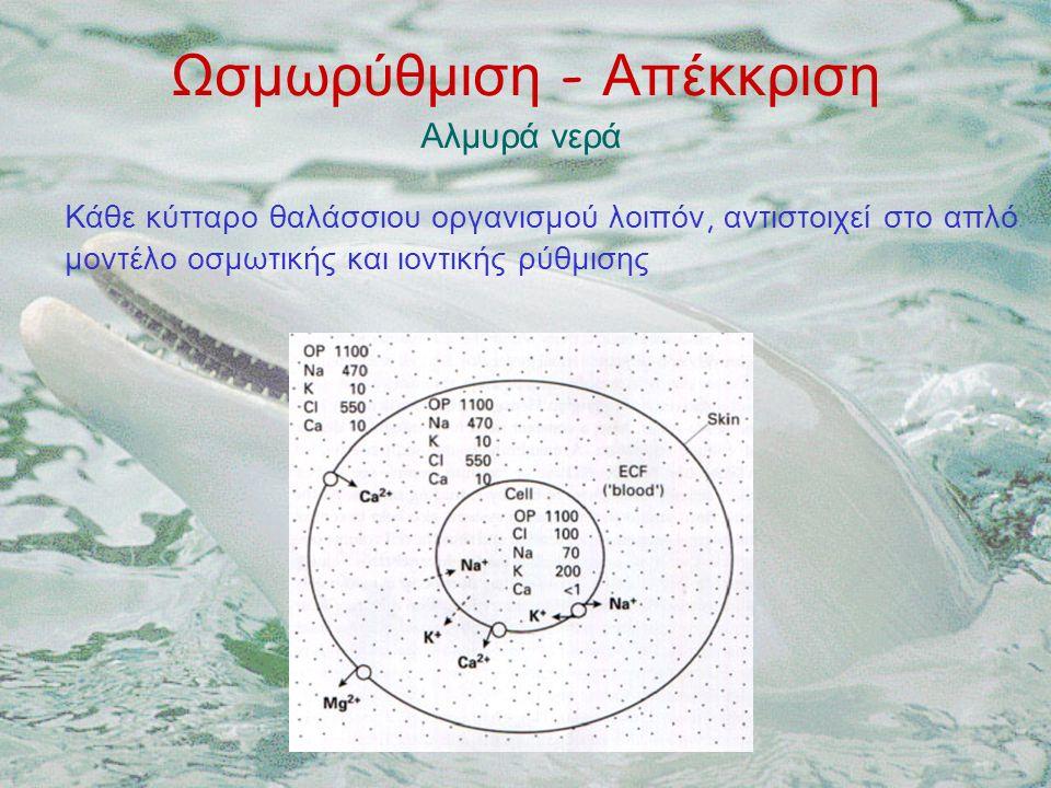 Ωσμωρύθμιση - Απέκκριση Αλμυρά νερά Κάθε κύτταρο θαλάσσιου οργανισμού λοιπόν, αντιστοιχεί στο απλό μοντέλο οσμωτικής και ιοντικής ρύθμισης