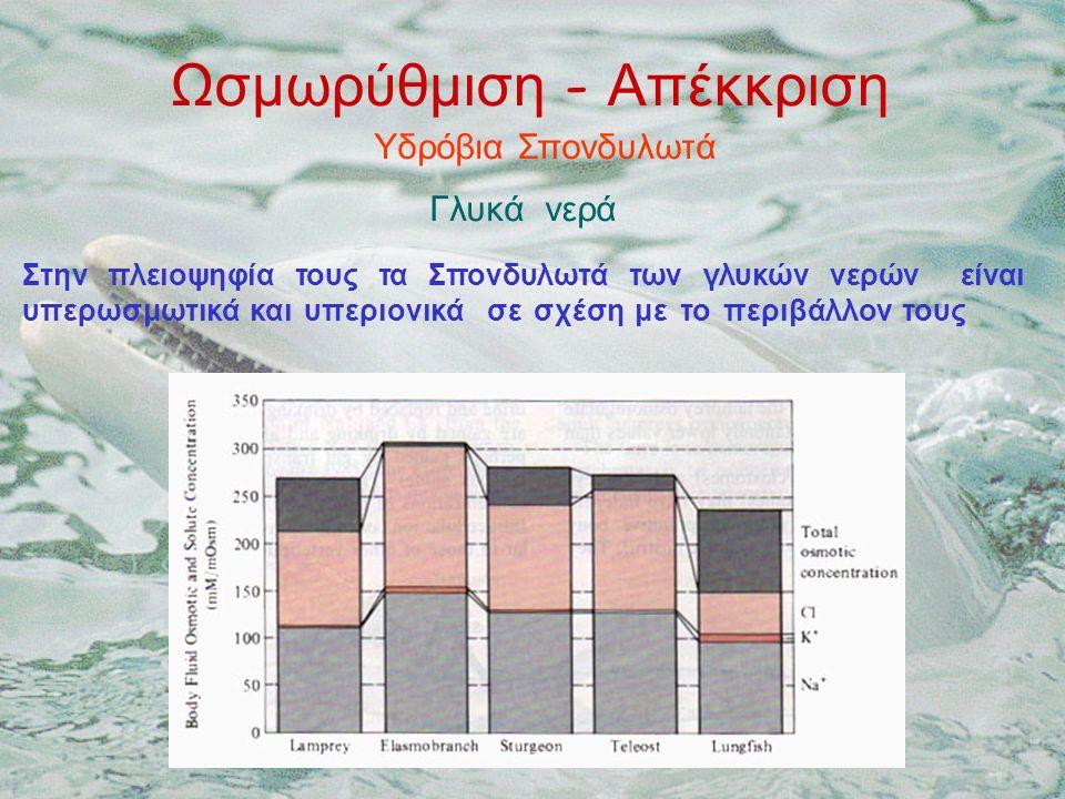 Ωσμωρύθμιση - Απέκκριση Υδρόβια Σπονδυλωτά Γλυκά νερά Στην πλειοψηφία τους τα Σπονδυλωτά των γλυκών νερών είναι υπερωσμωτικά και υπεριονικά σε σχέση με το περιβάλλον τους
