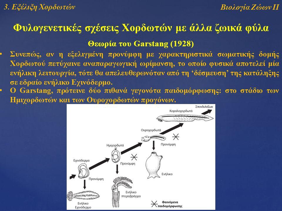 Βιολογία Ζώων ΙΙ 3.