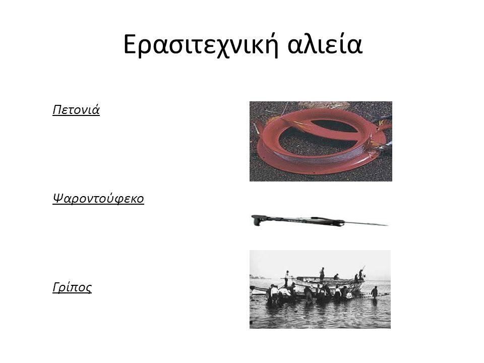 Ερασιτεχνική αλιεία Πετονιά Ψαροντούφεκο Γρίπος