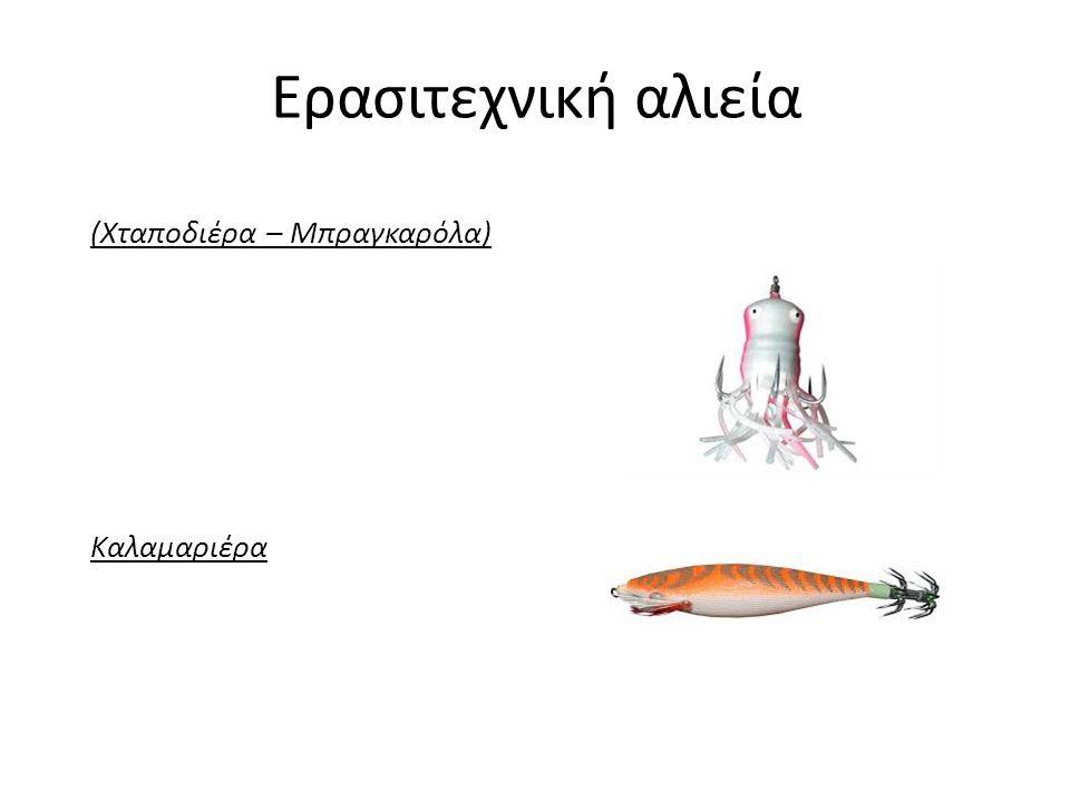 Ερασιτεχνική αλιεία (Χταποδιέρα – Μπραγκαρόλα) Καλαμαριέρα