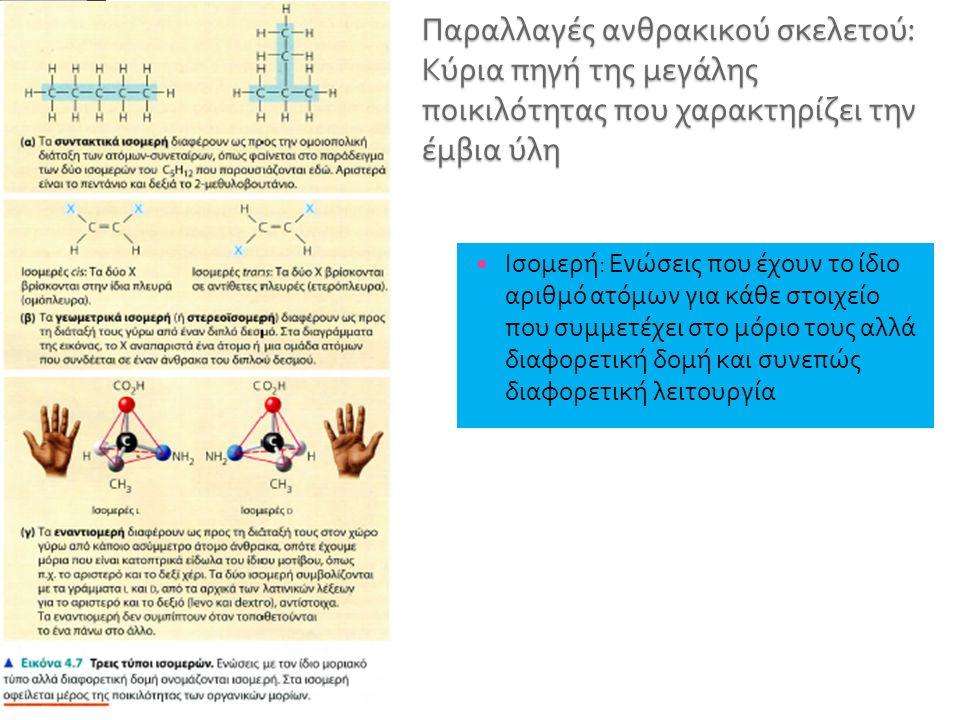 Ισομερή : Ενώσεις που έχουν το ίδιο αριθμό ατόμων για κάθε στοιχείο που συμμετέχει στο μόριο τους αλλά διαφορετική δομή και συνεπώς διαφορετική λειτουργία
