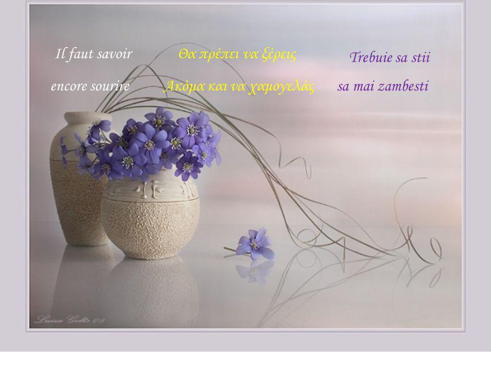3 Flori Luiza Gelts