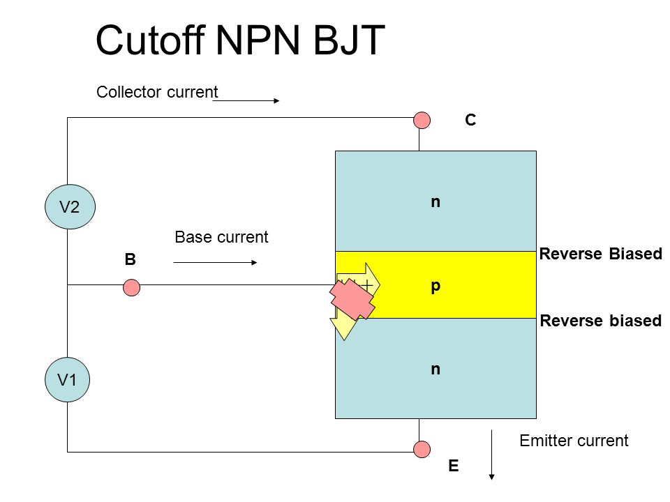Cutoff NPN BJT n p n V2 V1 +++ C B E Emitter current Collector current Base current Reverse biased Reverse Biased