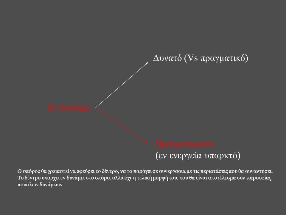 Εν δυνάμει Δυνατό (Vs πραγματικό) Πραγματωμένο (εν ενεργεία υπαρκτό) Ο σπόρος θα χρειαστεί να εφεύρει το δέντρο, να το παράγει σε συνεργασία με τις πε